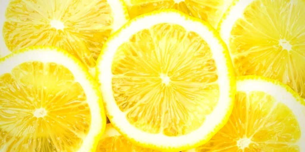 lemonade insurance stock